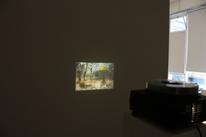 Installation view, eminent domain II, Pallas Projects, Dublin, 2015. (10)