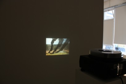 Installation view, eminent domain II, Pallas Projects, Dublin, 2015. (11)