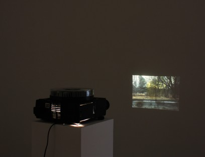 Installation view, eminent domain II, Pallas Projects, Dublin, 2015. (9)